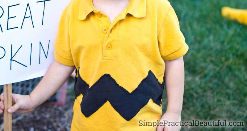 close-up of the Charlie Brown shirt with its black zig zag stripe