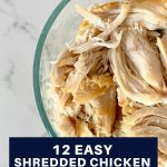 12 easy shredded chicken meal ideas