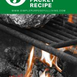 5 ingredient tin foil packet recipe
