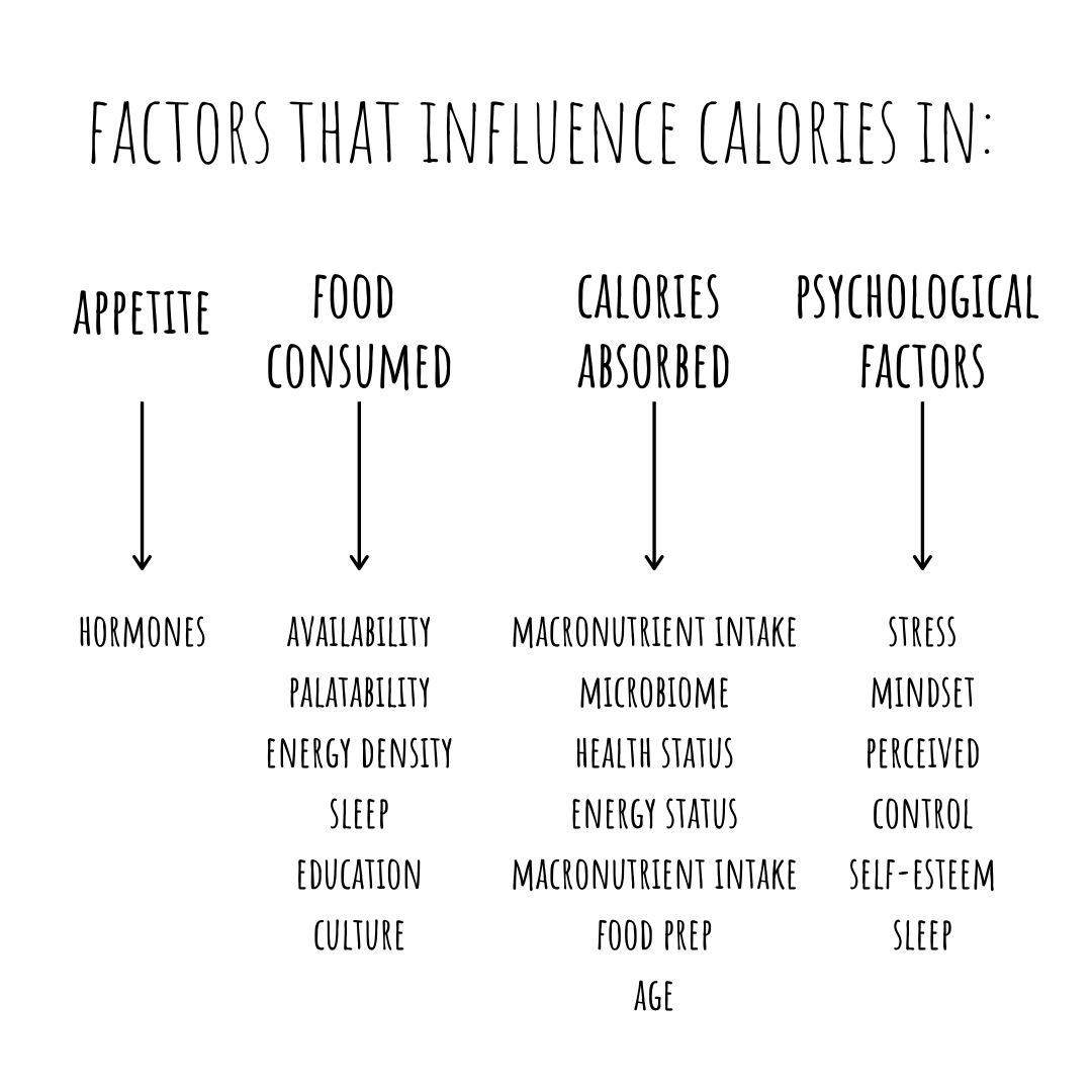 Lie Calories In Equals Calories Out