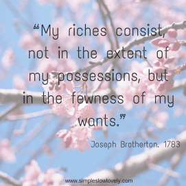 """My riches consist, not in the extent of my possessions, but in the fewness of my wants."""