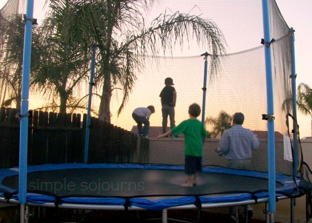 The Trampoline - Simple Sojourns