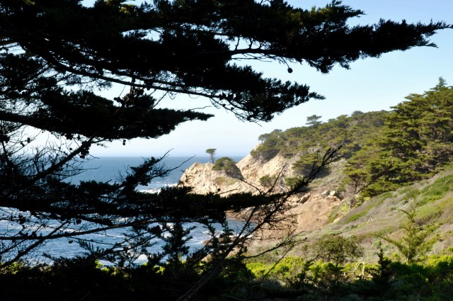 Monterey Bay Point Lobos State Reserve - Simple Sojourns