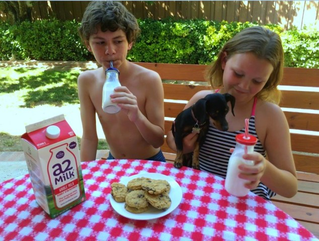 a2 Milk and Grandkids - Simple Sojourns