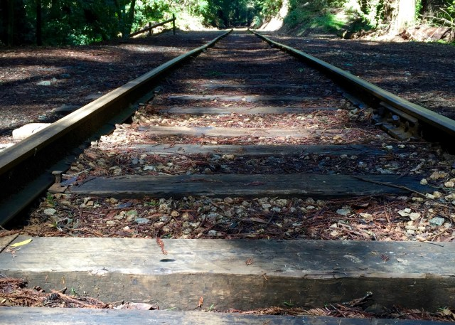 roaring-camp-big-trees-narrow-gauge-rr-track-simple-sojourns