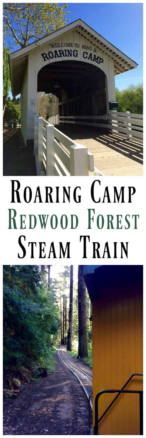 roaring-camp-redwood-forest-steam-train-simple-sojourns