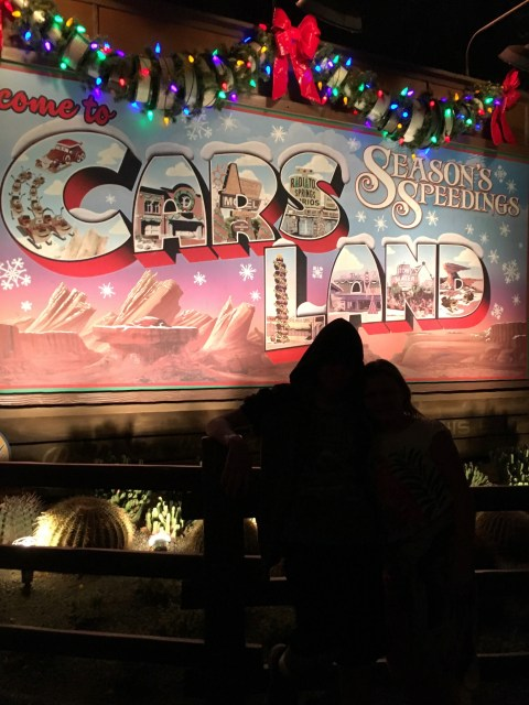 Disneyland Holidays - Simple Sojourns