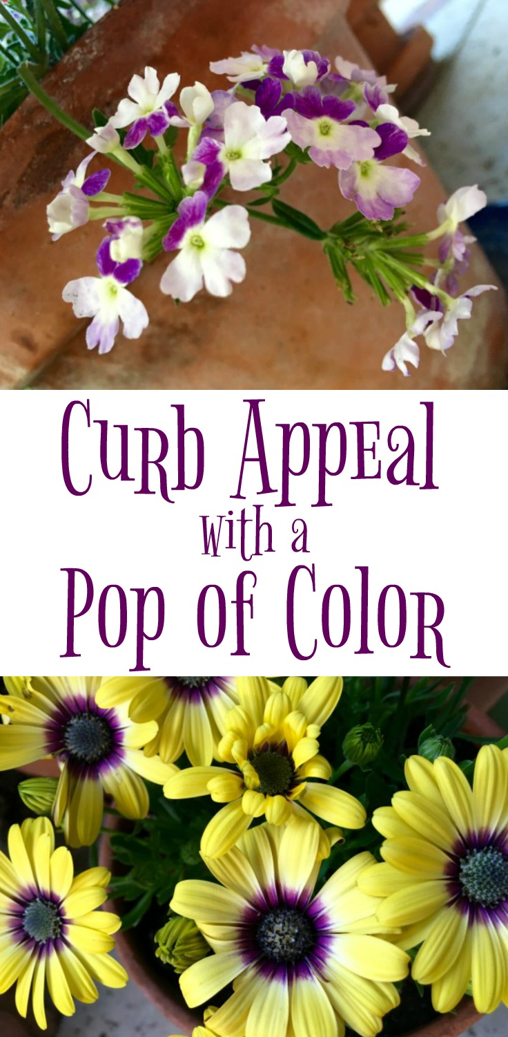 Curb Appeal with a Pop of Color - Simple Sojourns