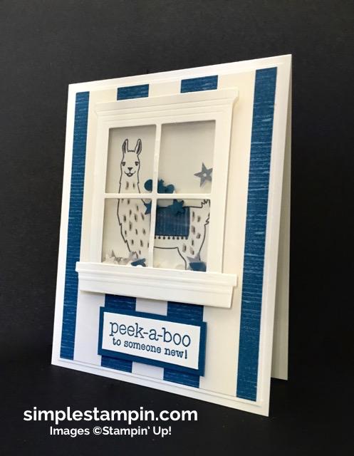 Stampin' Up! Birthday Fiesta Shaker Card, Suite Sayings Stamp Set, Baby Card, Susan Itell - simplestampin