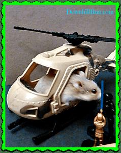 cobra hamstercopter