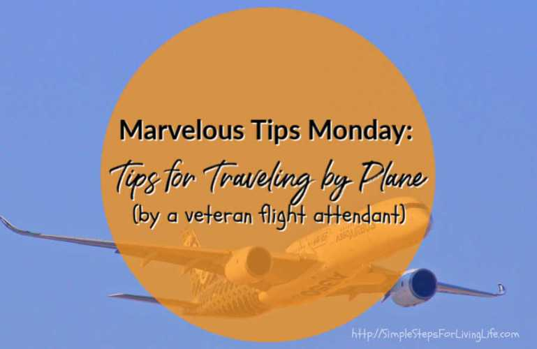 Marvelous Tips Monday: Tips for Traveling by Plane