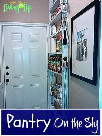 Behind door shelf 1