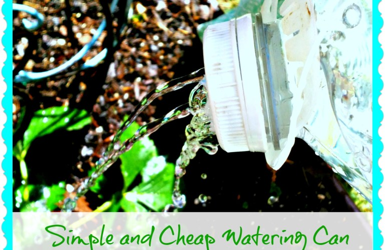 Simple and Cheap Watering Can