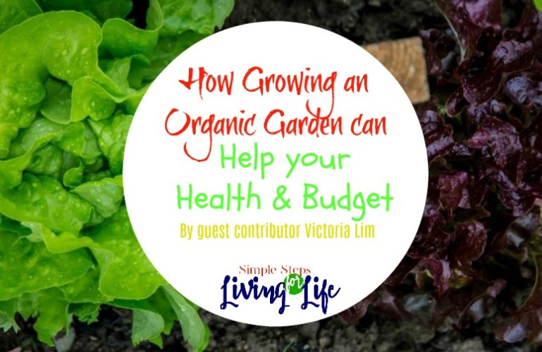 How Growing an Organic Garden can Help your Health & Budget