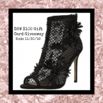 $100 DSW Gift Card Giveaway – Ends 11/30/18