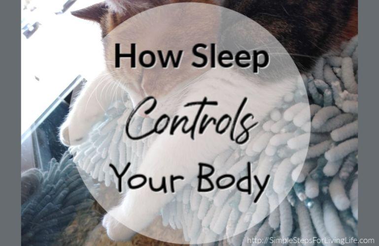 How Sleep Controls Your Body
