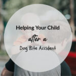 Helping Your Child after a Dog Bite Accident