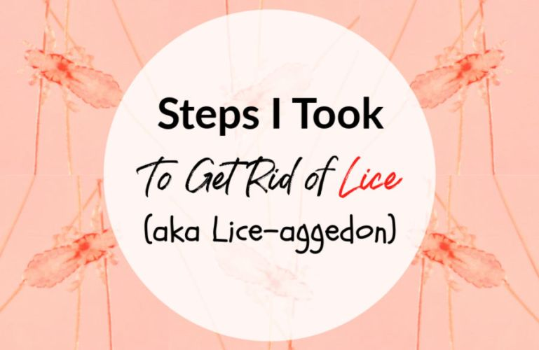 Our Fight Against Lice (-ageddon)