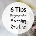 Tips To Organize Your Morning Routine