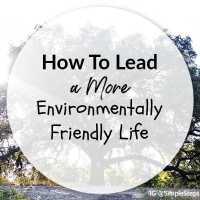 How To Lead A More Environmentally Friendly Life