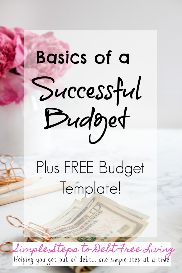 Learn how to budget with this free budget template!