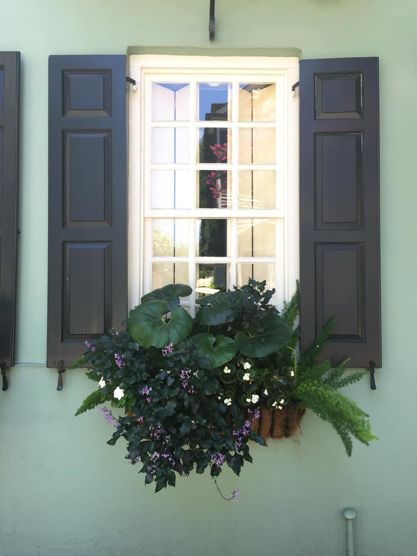 Roadtrip Reality: Charleston Window Boxes Aqua