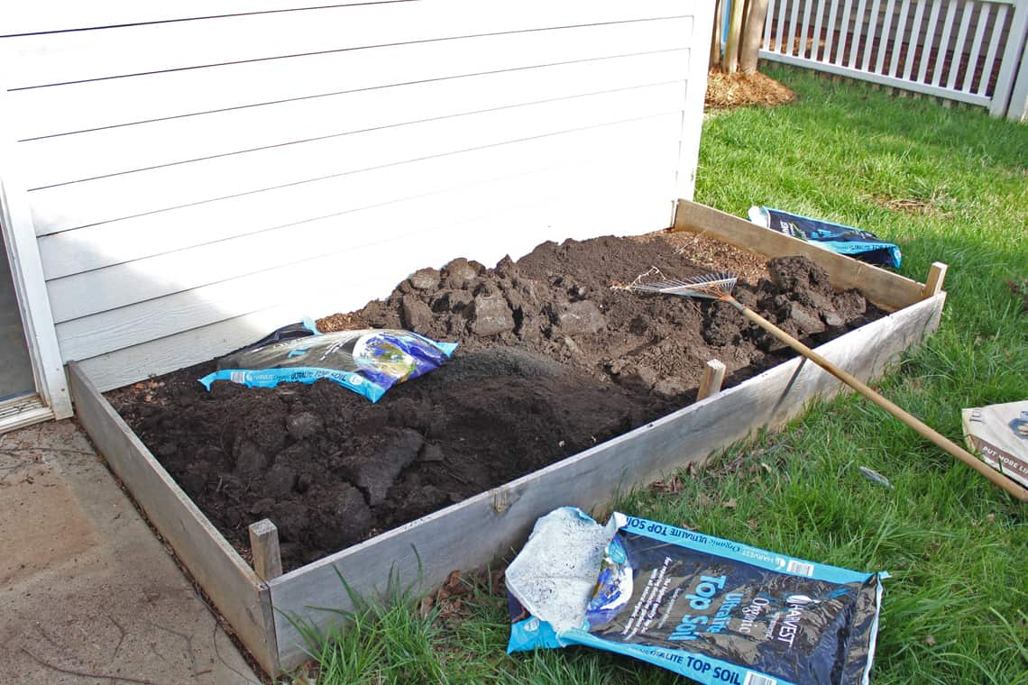 Planting Distance For Potatoes In Raised Beds