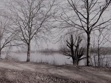 paysage-noir-et-blanc1