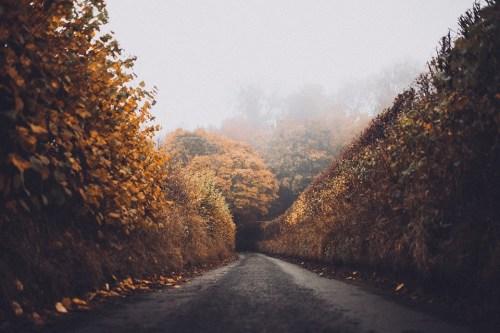 road-1030923_960_720