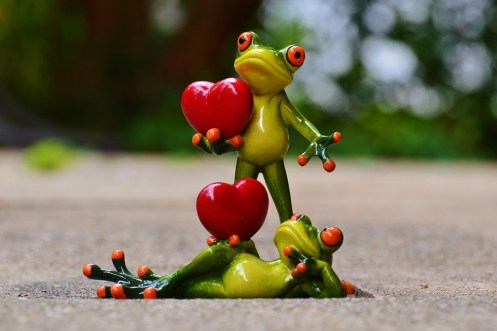 Pair Heart Frogs Love Funny Valentine's Day Pose