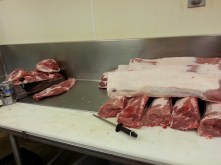 Fresh meat...
