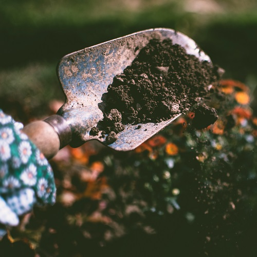 a person gardening with a trowel