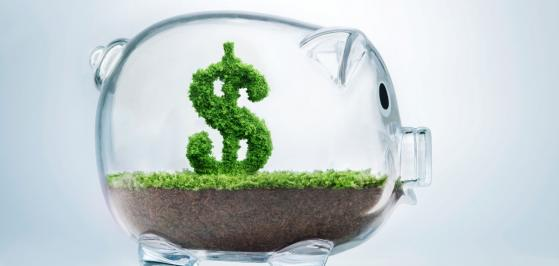 What is a Registered Disabilities Savings Plan?