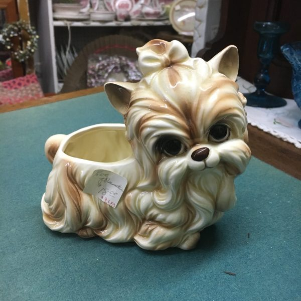 yorkie puppy planter antiquie