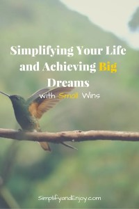 Learn how small wins can help you achieve your big dreams for the year.