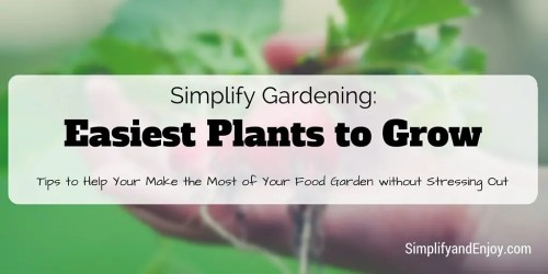 Easiest Plants to Grow simple garden tips