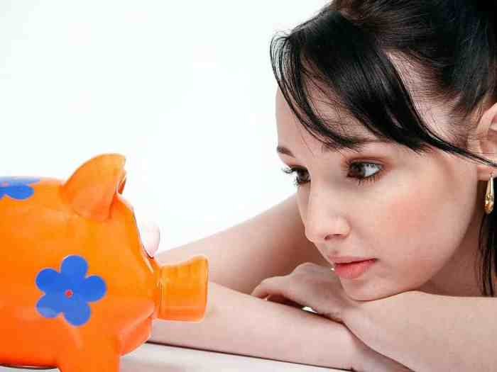 9 super tips to survive on a single income - cut your expenses and simplify your life