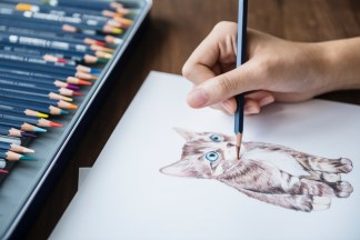 Hand draws a kitten with blue eyes