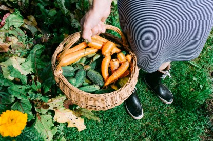 A woman in a garden holding a basket with homegrown vegetables