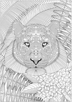 Tolle Ausmalbilder mit Dschungeltieren aus der Coloring Collection Ausmalheft Jungle 03/2015
