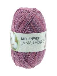 Lana Grossa Meilenweit Solo Cotone Scuro Farbe 2004