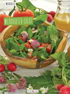 Rezept - Wildkräuter-Salat - Clean Food - olala solala mit Andrea Sokol - 01/2019