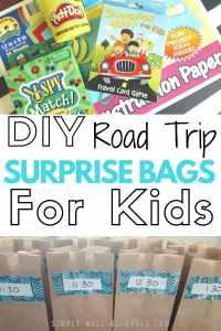 Road Trip Surprise Bags