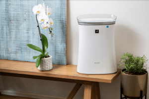 Sharp air purifier on a bench with flower