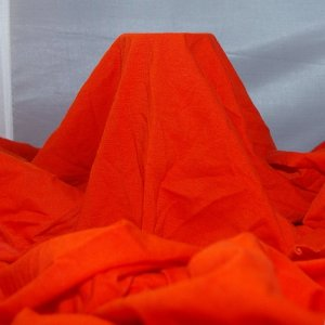 Orange Cotton-Lycra