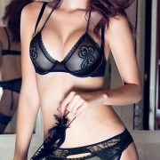 black lace embroidered floral see-through bra set sexy womens lingerie