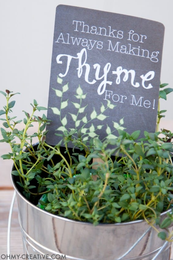 Potted-Herb-DIY-Gifts-with-Printable-Tags-4