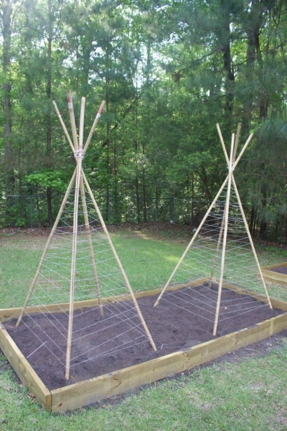 Completed-Bean-Teepees-The-Everyday-Home-600x900
