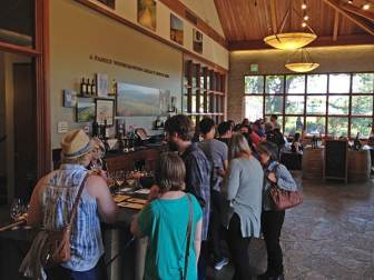 Dog friendly wineries Sonoma Valley Kunde Simply Driven