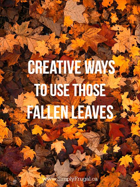 Creative Ways to Use Those Fallen Leaves